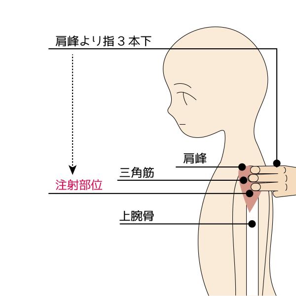 筋肉注射2